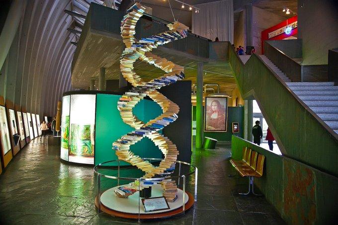 ADN hecho con guías en la Domus